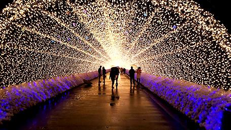 200mの光のトンネル