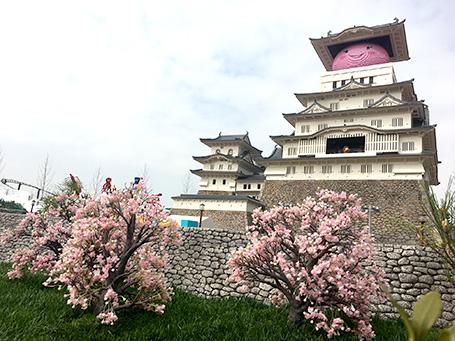 姫路市のご当地キャラ「しろまるひめ」も桜色に。