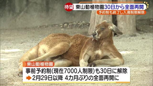 予約 東山 動物園